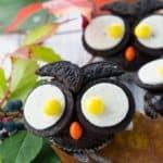 Halloween Owl Muffins