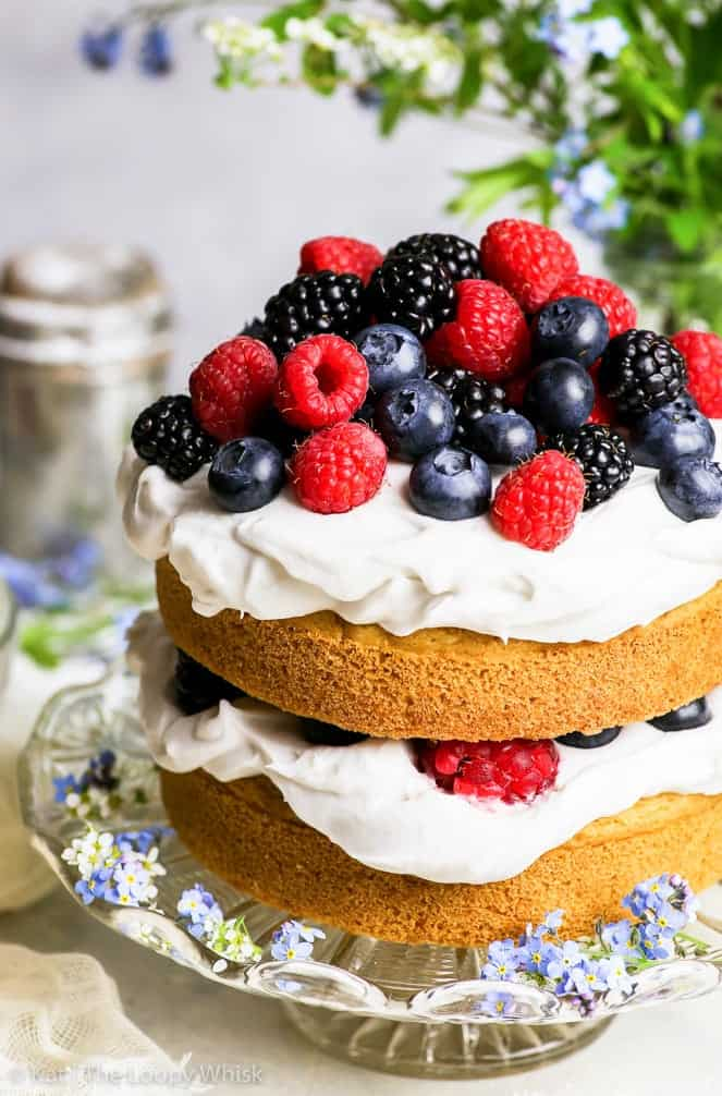 Gluten-Free Vegan Vanilla Cake with Summer Berries