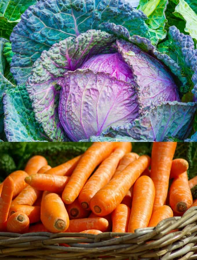 a close-up of cabbage and carrots in a basket