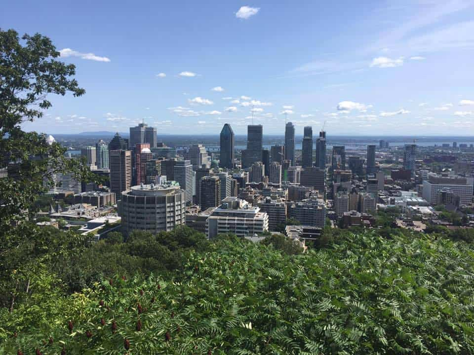 skyline of Montreal taken from Mont Royal