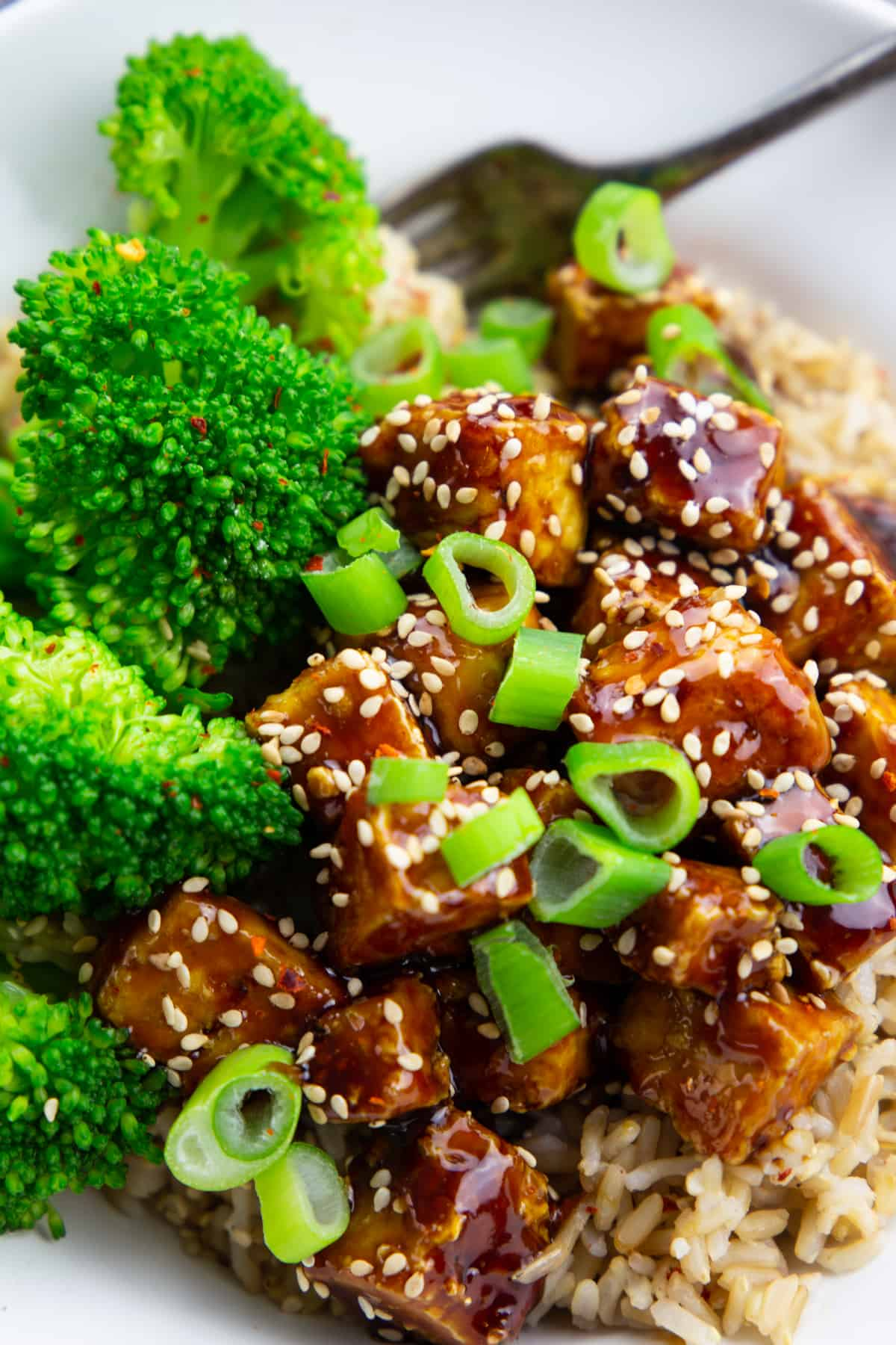 close-up of teriyaki tofu with rice and broccoli sprinkled with sesame seeds